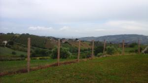 Case Vacanza in Vendita a Monteprandone #7